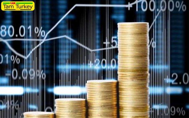 اقتصاد ترکیه فرصتهای بزرگی را ایجاد میکند