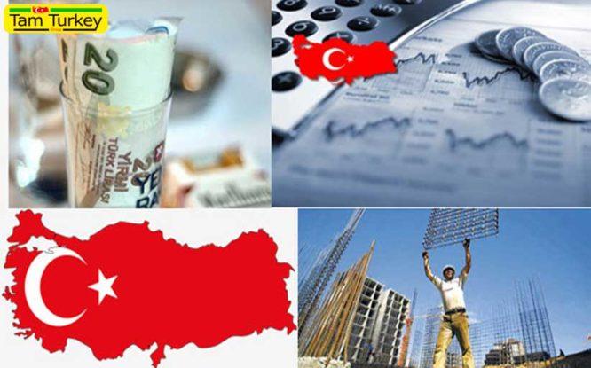 افزایش صادرات انار ترکیه در سال جاری