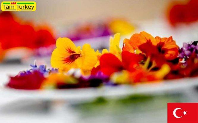 استقبال مردم ترکیه از گلهای خوراکی در آستانه روز ولنتاین