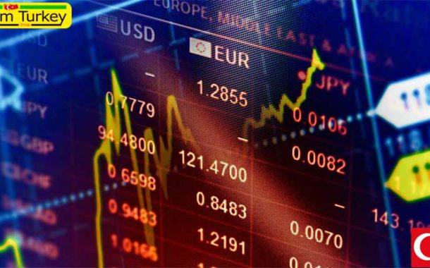 ترکیه سال آینده مجددا رشد اقتصادی قوی خواهد داشت