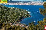 جزیره بیوک آدا ترکیه | نگینی در قلب سواحل دریای مرمره ترکیه