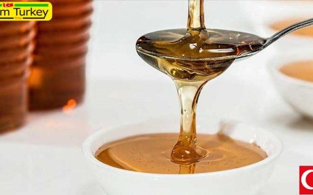 تولید 110 هزار تن عسل طی سال جاری در ترکیه