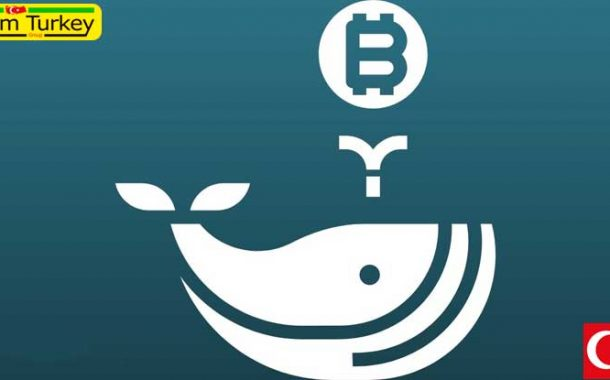 The entrance of 141 new Bitcoin whales indicates an inevitable bullish uptrend